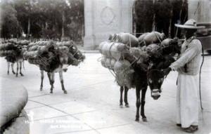 Cargadores de cántaros. Parque Obrero (Agua Azul) 1920. De P. Yo soy tapatío en F